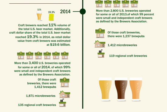 Infographic 20 Years of Craft Beer Revolution